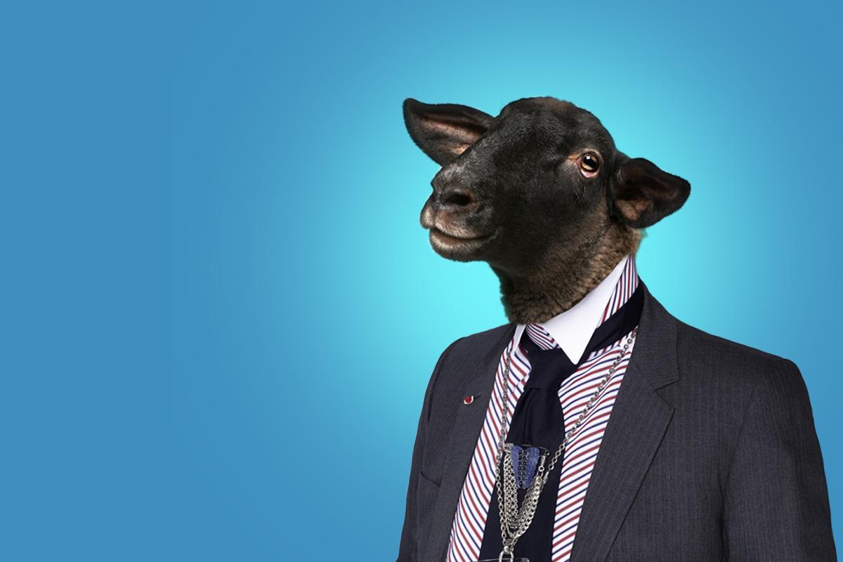 Le grand bêtisier du recrutement: les 5 moutons noirs